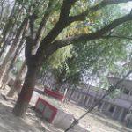 Mahakavi Tulsidas Mahavidyalaya